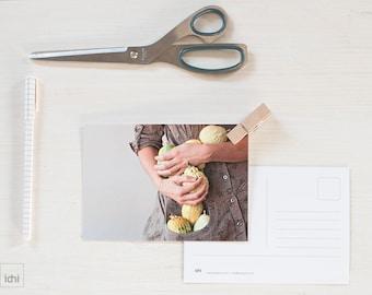 Photographic postcard. Portrait photography. Fall colors. Green pumpkins in my hands. Postcard Format. Fine art postcard. Photo. Kitchen Art
