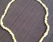 Pastel Multi Coloured Hawaiian Shell Necklace