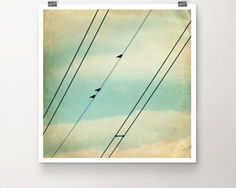 Walk the Line - FineArtPrint