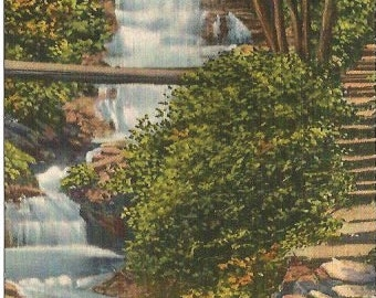 Water Falls along the Turkey Path at arrison State Park Pennsylvania's Grand Canyon Linen Post card Vintage Postcard