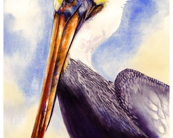 "5x7"" Pelican Bird Watercolor Giclee Fine Art Print [Watercolor Pelican Bird Portrait Print, Pelican Print, Pelican Art, Watercolor Art]"