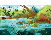 pond and river ecosystem print, Children's room artwork, educational, 8.5 by 11 artwork