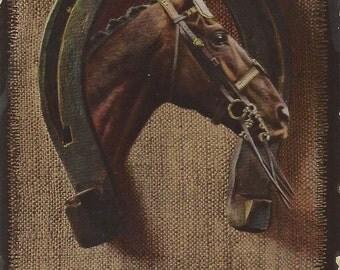 Ornamental Bay - Antique 1910s Bridled Horse Photomontage Postcard