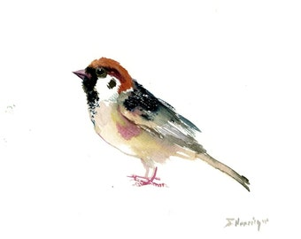 Sparrow, 12 X 9 in, original watercolor painting illustration