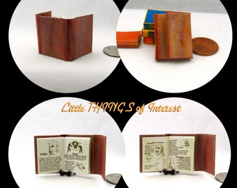 Miniature Book -- Wesen BOOK Of LORE Color Illustrated Miniature 1:12 Scale Book Grimm