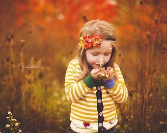 Autumn Apple Crisp Headband, Fall Headband, Baby Headband