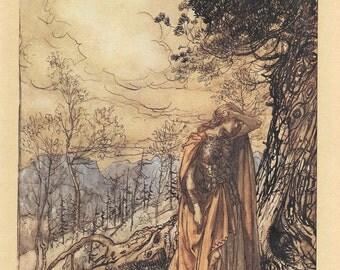 Woman Warrior The Rhinegold & The Valkyrie 1910 by Arthur Rackham