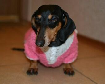 Pet clothing sweaters Dachshund Pet sweater Dog clothes Pets clothes Dog accessories Sweater Dog Clothes for pets Hand Knitting Dog sweater