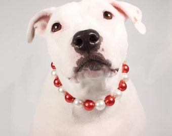 Red and Ivory Jumbo Chunky Pearl Dog Collar, Buckle Collars, Martingale Collars, Dog Pearls UNBREAKABLE GUARANTEE!