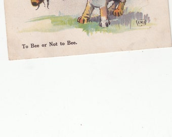 To Bee Or Not To Bee A/S Bee and Small Size Dog Have a Stand Off/Antique Postcard