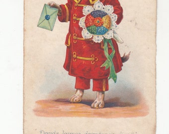 Male Dachshund? Dressed In Red Styled Coat-Hat Carrying Card And Bouquet Fine Old Dog Postcard