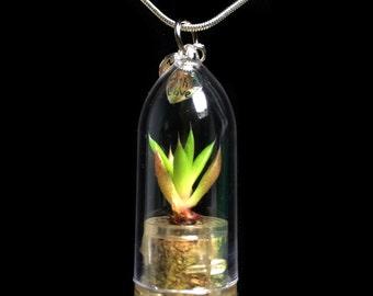 Wearable Succulent Necklace / Mini Torch Succulent Terrarium Necklace / Miniature Terrarium / Nature Jewelry Necklace