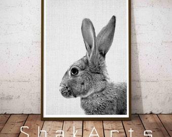 Large Nursery Poster, Boys Nursery Decor, Rabbit Print Decor, Nursery Wallpaper, Print Nursery Rabbit, Nursery Set Print, Nursery Décor