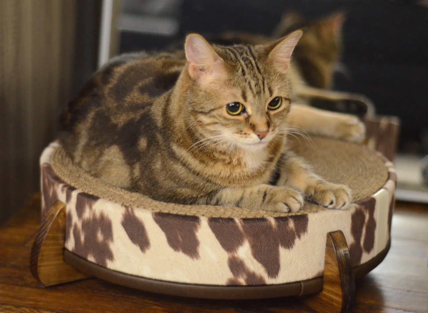 Cat scratcher and cat bed large round replaceable cardboard - Cat bed scratcher ...