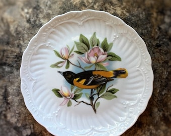 Oriole Bird Plate Limoges France Collectible Cabinet Plate Vintage Fine Porcelain From France Unique Gift For The Bird Watcher Ornithologist