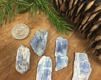 Kyanite Blades (1 piece)