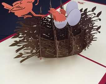 Happy Birthday/Mothers Day/Thinking of you/Celebration/Get well soon/Just to say/ For Him/Her /Daughter /Son /3D Birds Nest Pop Up Card