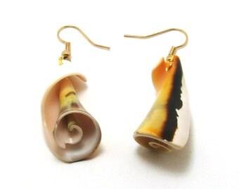 Earrings shell, OOAK
