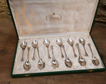 Vintage Set of 12 Jam/Preserve Silver Plated Spoons Boxed