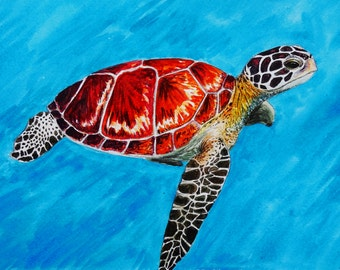 Sea Turtle Giclee Print - 9x14 or 8x10 Giclee Print of Watercolor Sea Turtle Painting