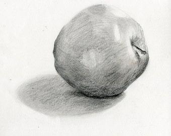 Apple study #8 (Original charcoal drawing)