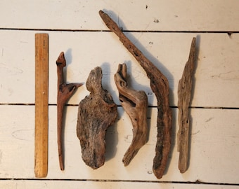 5 unique driftwood pieces from Cornwall- 21-38 cm in length- perfect for craft & displays