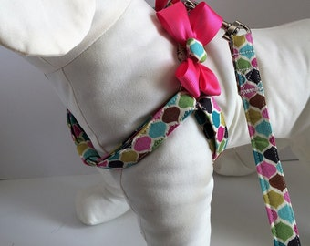 Step-in Dog Harness - Fabric Dog Harness - Dog Harness and Leash - Girly Dog Harness - Cute Dog Harness - Dog Collar Alternative