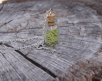 Glass bottle tiny necklases pendant charm moss 1 pc