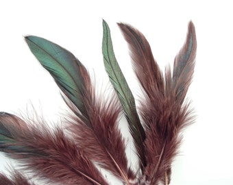 10 Brown Green Feathers 4-7 inches. Real feathers - Hat feathers - Feathers for dreamcatchers - Feather Hair extensions. UK Seller