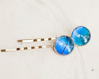 Real Butterfly Bobby Pin - Real Butterfly Hair Pin - Butterfly Wing Bobby Pin - Butterfly Wing Hair Pin - Blue Morpho Hair Clip