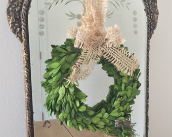 """Preserved Boxwood 8"""" Wreath with Burlap Ribbon"""