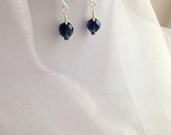 Montana Blue Crystal and Silver Dangle Earrings
