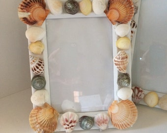5 X 7 Sea Shell Picture Frame