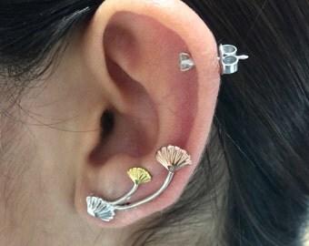Shells earring climbers