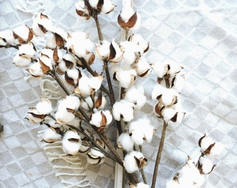 "30"" Cotton Stems, Cotton Balls, Cotton Branches, Bunch, Wedding, Rustic, Country, DIY, Flowers, Floral Arrangement, 2nd Anniversary,"