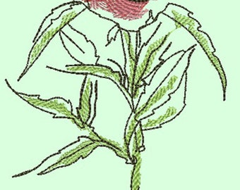 Peony embroidery design, coral floral embroidery,  3 peones,Digital file for embroidery machine ,Floral embroidery design, Instant download