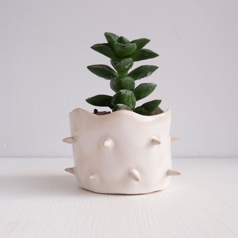 Handmade Round White Ceramic Spiky Cactus Planter Pottery
