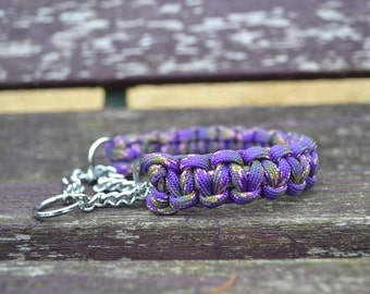 Paracord collar with martingale chain for the tiny hound