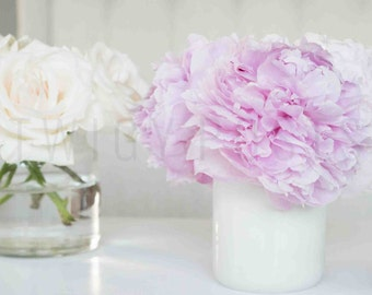 Floral Stock Image for Instagram | Pink Peonies & Roses