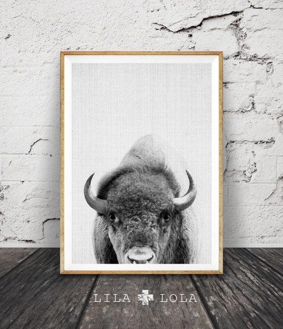 Wall Art Designs Download : Buffalo print bison wall art black and white by