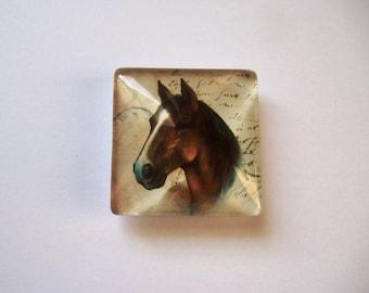 Horse Needle Minder