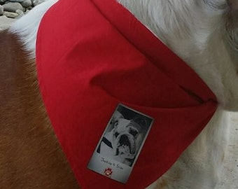 Dog Bandana With A Cause