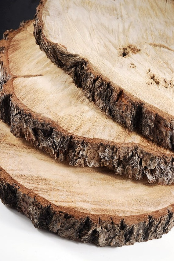 Items similar to wood round slices 15 19 extra large for Large tree trunk slices
