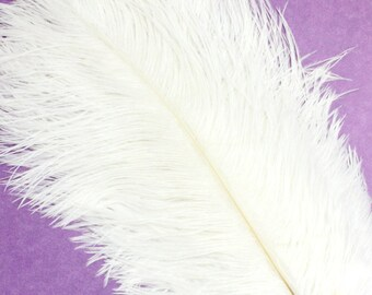 5-7 Inch White Ostrich Feathers. (5) White Feathers for Wedding Decor. Feather for Head Piece. Fascinator Feathers. Ostrich Hat Feathers