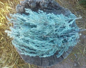 4 oz New Mexico Desert Sage * 4 oz Sage * Loose Sage * Sagebrush * Ceremony Smudge Stick * Smudging Stick * Plant Medicine * Healing Tools