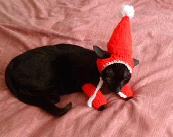 PARTY CAT HAT.