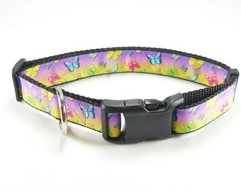 """Butterfly Dog Collar (1"""" width) - Large - Extra Large"""