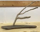 Ohio River driftwood jewe...