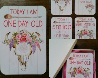 Baby Milestone Cards - Girl - Floral Bull Skull - DISCONTINUED - ON SALE!