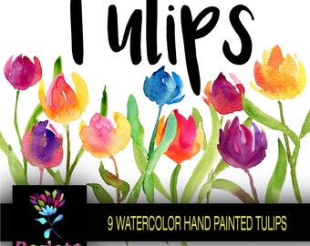 Watercolor Tulips, watercolor clip art, DIY Projects, Cards ,hand painted PNG, Backgrounds, Blogs